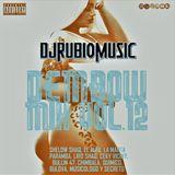 Dembow Mix Vol.12 2017