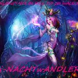 Dj-NACHTwANDLER-FRüHLINGSTANZ IM FULL PsY ON WALD.2013 F.s.O.NACHTwERK RECORD.