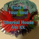 Food 4 Your Soul - 2013 Remix