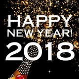 2017 Year Mix (House, Electro)