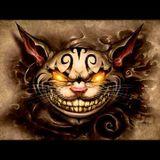 The Psycadellik Cat
