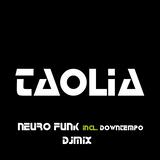 Taolia - Neurofunk incl. Downtempo Djmix Episode 022