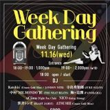 Weekday Gathering Sampler 02
