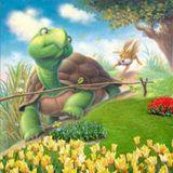 Cafe Blog số 27 - Bạn sẽ chọn một chú thỏ hay một chú rùa ???