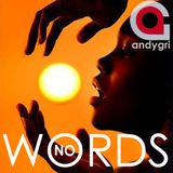 andygri   NO WORDS deep session