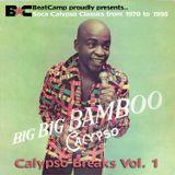 Calypso Breaks Vol. 1-1