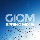 Spring Mix 16