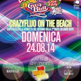 CRAZY BULL ON THE BEACH - live set pt. 4 by Fabietto Cutrignelli dj - sunday, august 24th 2014