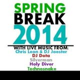 SpringBreakEdit (Live @ Spring Break 2014)