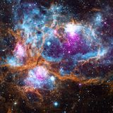 Have a Cosmic Day with Colleen 'Cosmo' Murphy
