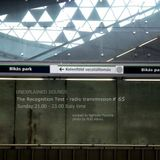 Unexplained Sounds Group - The Recognition Test # 65
