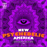 New Psychedelic America Two [Expanded Edition]