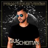 Guy Scheiman - Peak Hour Vibes