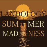 Landology- Summer Madness MIx 2012
