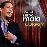 ENTREVISTA A LUIGGY HERNANDEZ PARA LAS CALIENTITAS DE FRECUENCIA 5 FM