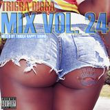 TRIGGA DIGGA MIX VOL 24