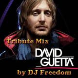 David Guetta Tribute Set Mix by DJ Freedom part II
