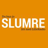 SLUMRE 21.10.14 (test)