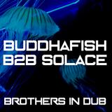 Buddhafish B2B Solace - Brothers In Dub