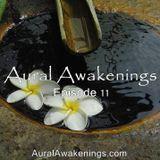 Aural Awakenings: Episode 11
