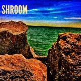 SHROOM Podcast 15