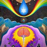 Funk Machine: Trip #27 (House Particles)