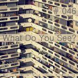 # 046 Kirill Matveev - What Do You See (2011)