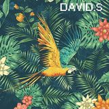 David S.- TechnoPod#1