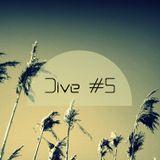 Dive #5 (March 2013)
