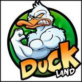 MIX DUCK LAND XTREME - BRIAN FT. DJ JOHS (IN SUMMER♥)
