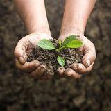 Emission Les Défricheurs - Le compostage dans tous ses états