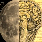 Half A Moon, Half A Mind