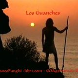 FrancoFunghi [hbr1.com ॐ GOAgemein.de REC] - Los Guanches ⵉⴳⵡⴰⵏⵛⵉⵢⴻⵏ
