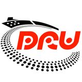 DJ DRU - Electro House Mix (December 2014)