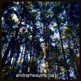 Andre Rheaume Cloudcast #24