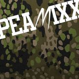 PEAMIXX 04 (HIP HOP AND UNDERGROUND RAP MUSIC DJ-MIX, APRIL 2014)