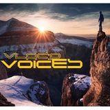 Vlad:P - Voices  //04.12.2013//