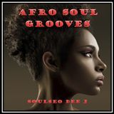 Afro Soul Grooves