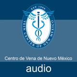 FAQ Espanol 2-10: ¿Qué es una ulcera en la piel?