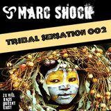 Tribal Sensation 002