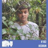 Wild City #183 - Hedrun