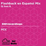 Flashback to Rock En Espanol Mixed by Dj Sammysam