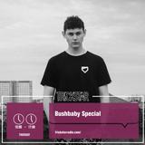 Bushbaby - 16-02-17
