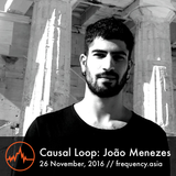 Causal Loop: Joao Menezes - 26th November, 2016