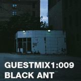 guestmix1:009 Black Ant