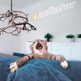 .radiator – PussySound