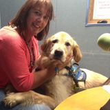 The Irish Guide Dogs are joined by handsome Assistance Dog Gandon and his mammy, Claire Hawkins