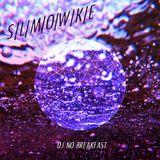 S/L/M/O/W/K/E - M.V.D.X. radio show n°73 - 05/06/13 - radio FMR 89.1