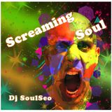 Screaming Soul