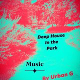 Deep House In The Park   Many Shades of Urban Grooves